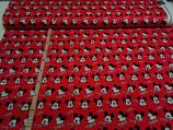 Disney Mickey rot