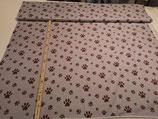 Hundepfoten auf grau