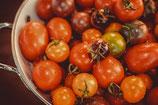 Raritäten/ Besondere Tomaten