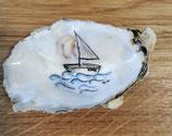 Austernschiff 14,3