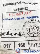 11222 Nicaragua Geisha La Llamada