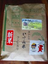 いすみ米 玄米5kg