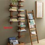 Special Shelf Script