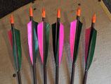 Pfeile für traditionelles Bogenschiessen, einfach
