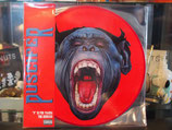 Produktname:Puscifer - V is for Viagra - The Remix -Picture - Disc RSD 2016
