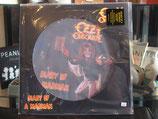 Produktname:Ozzy Osbourne-Diary of A Madman