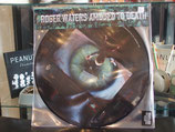 Roger Waters-Amused to Death-Picture Disc
