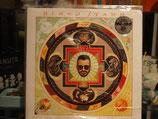 Ringo Starr - Times takes Time -Vinyl