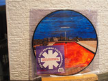 Red Hot Chilli Peppers-Californication- Limited Edition- Picture Disc- Neu & OVP
