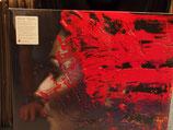 Steven Wilson - Hand cannot Erase -Vinyl