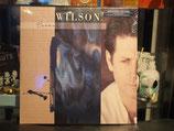 Produktname:Brian Wilson - Brian Wilson