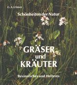 Gräser und Kräuter