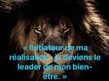 """""""Initiateur de ma réalisation : Je deviens le leader de mon bien-être"""""""