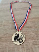 Gold-Medaille Leseprofi