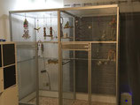 Zimmervoliere 204x102 cm mit Trenngitter, Schmutzschutz und Boden - vormontiert