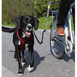 Trixie Biker-Set, für große Hunde