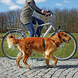 Trixie Fahrrad- und Joggingleine 1282