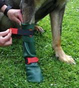 DogGusti® Hunde-Gummistiefel XL ca. 10,5cm dunkelgrün