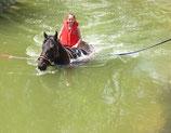 Attraction de parc : Baignade à cheval (1 tour) - Valide avec toute entrée de parc ou de parc & grand spectacle
