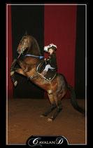 Attraction de parc : Magie à cheval (1 cabré) - Valide avec toute entrée de Grand parc avec spectacles