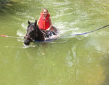 Attraction de parc : Baignade à cheval (1 tour) - Valide avec toute entrée de Grand parc avec specyacles