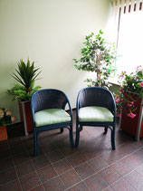 Rattan Sessel - in Leder gebunden 4 Stück