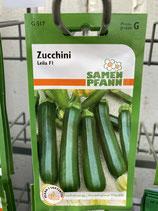 Zucchinisamen Leila F1