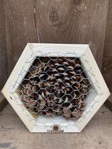 Nützlingswabe für Marienkäfer und Florfliegen