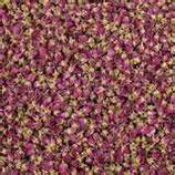 有機保加利亞玫瑰乾花 Dried Rose buds