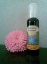 薰衣草蘆薈滾珠棒 Roll-On Aloe Lavender