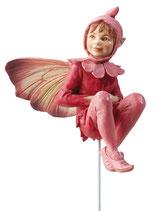 Flower Fairy mit Stab Nachtnelke