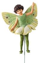 Flower Fairy mit Stab Weissdornblüte