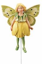 Flower Fairy mit Stab Butterblümchen