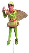 Flower Fairy mit Stab Platane