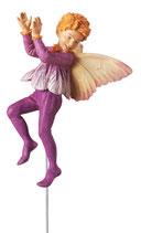 Flower Fairy mit Stab Krokusjunge