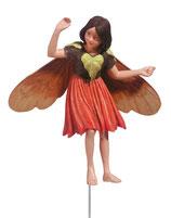 Flower Fairy mit Stab Schmerwurz