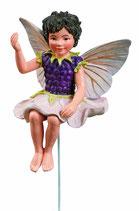 Flower Fairy mit Stab Brombeere