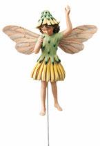 Flower Fairy mit Stab Habichtskraut