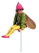 Flower Fairy mit Stab Nachtschatten
