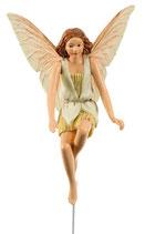 Flower Fairy mit Stab Wilde Clematisblüte