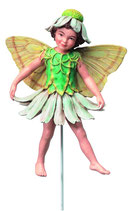 Flower Fairy mit Stab Margerite