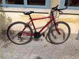 Mountain bike uomo