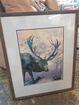 Glass Framed Watercolour Deer Print