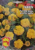 BUSTA TAGETE NANO GIALLO