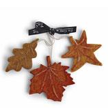 Autumn Leaves Set of3