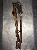 1 Ochsenziemer ca 70 cm (2Teile) luftgetrocknet