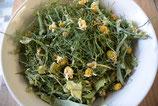 Sammy´s Knabberspaß Fenchelkraut & Kamillenblüten