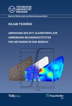 Anpassung des EFIT-Algorithmus zur Anwendung rechnergestützer POD-Methoden im SHM-Bereich