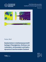 24: Gaskavitation in kohlenwasserstoffhaltigen Flüssigkeiten: Einfluss von ruhendem, strömendem und hydrodynamisch kavitierendem Zustand