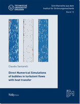 13: Direct Numerical Simulations of bubbles in turbulent flows with heat transfer
